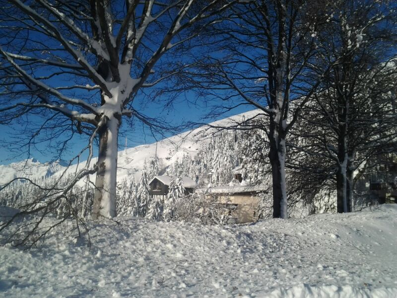 http://www.albergolapinetabielmonte.it/wp-content/uploads/2017/12/IMG-20131227-WA0000.jpg